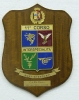 Crest SICUR-5